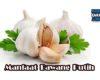 Manfaat dan Khasiat Bawang Putih untuk Kesehatan Tubuh