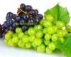 Manfaat Buah Anggur untuk Stroke, Cara Aman Atasi Kerusakan Pembuluh Darah Otak